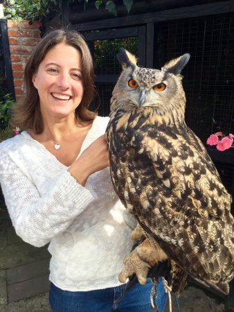 Just The Most Awesome Experience Beautiful Owls And Such A Personal Experience Too Happy And V Picture Of Happisburgh Owls North Walsham Tripadvisor