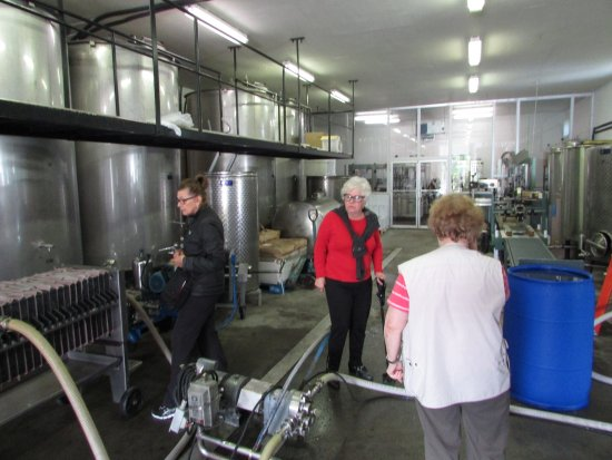 Rodrigues Winery: modern equipment