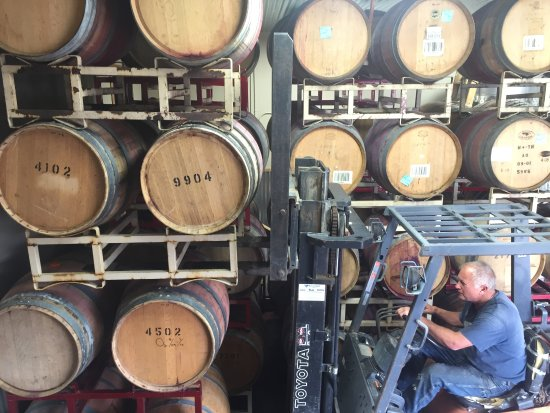 Benton City, WA: Wine Maker Phil racking some barrels of future vino!