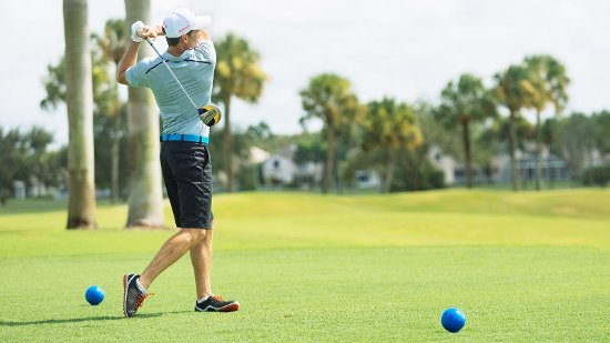 Palm Beach Gardens, FL: Village of Golf
