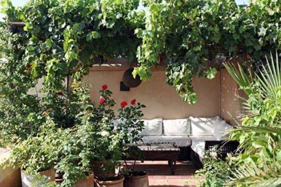 un jardin sur le toit picture of dar rbaa laroub. Black Bedroom Furniture Sets. Home Design Ideas