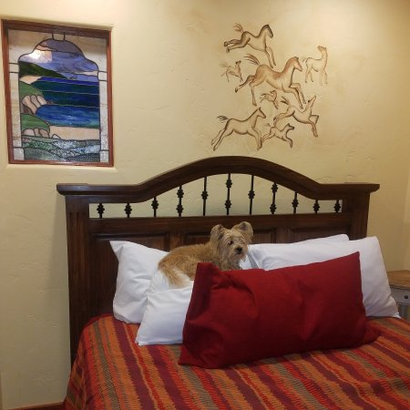 Avila La Fonda Hotel: Dog Friendly, Wine Reception, Avila Valley Barn Bakery Pie, Chocolates on the Bed, Welcome Snack