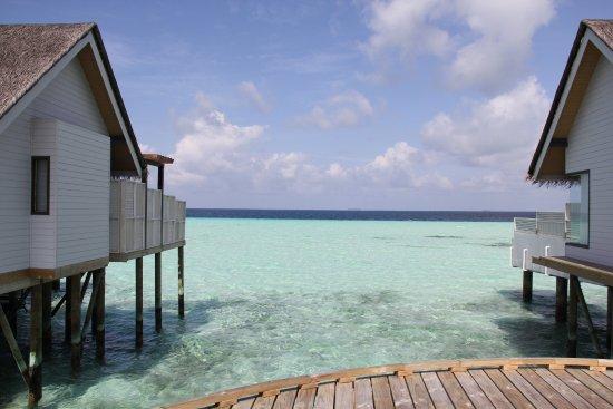แนวปะการังวงแหวนทิศใต้ South Male Atoll ภาพ