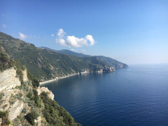 photo2.jpg - Picture of Bar Terza Terra, Corniglia - TripAdvisor