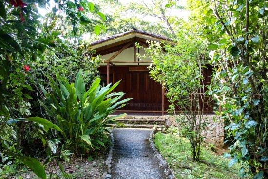 Pavones, Costa Rica: Sunset Cabina entrance