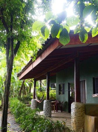 Pavones, Kosta Rika: Congo Cabina