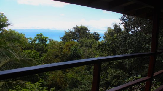 Pavones, Costa Rica: View from Sunset House