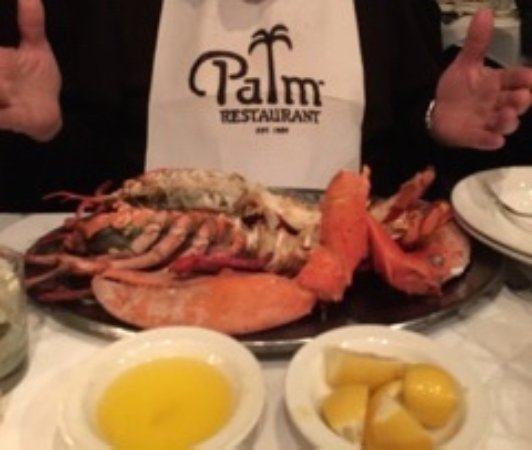 The Palm - NYC One: 6 pound Lobster!!!