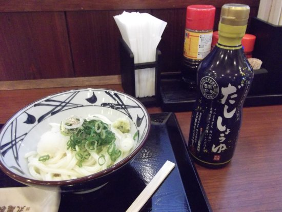 Higashiura-cho, Japan: おろし醤油うどん