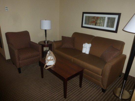 Comfort Suites Hotel & Convention Center Rapid City: Sitzecke