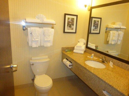 Comfort Suites Hotel & Convention Center Rapid City: Toll angeordnete Badetücher