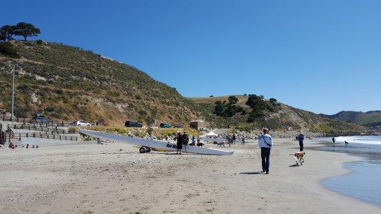 Avila Beach, Kalifornien: Fun place for dogs