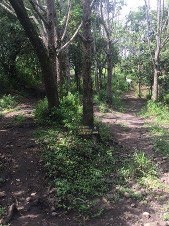 Hacienda Guachipelin: photo5.jpg