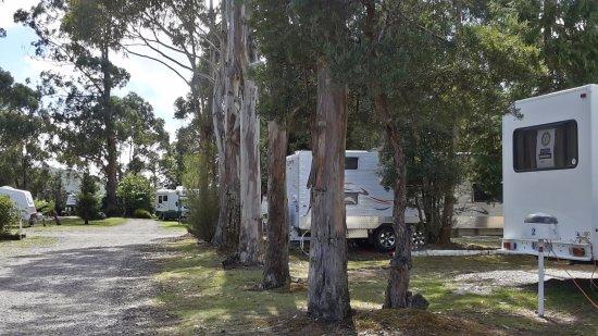 Zeehan, أستراليا: Powered SItes
