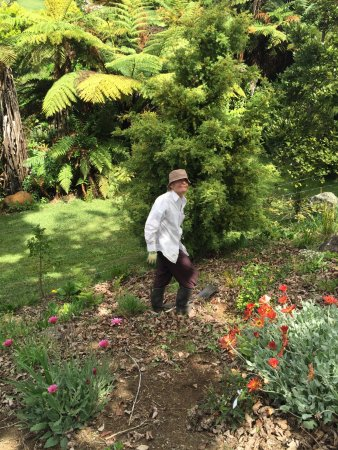 Kerikeri, New Zealand: Tropical gardening