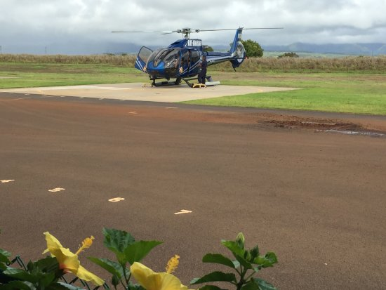 Blue Hawaiian Helicopters  Kauai  Picture Of Blue Hawaiian Helicopters  Ka