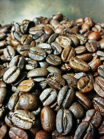 Carlisle, Пенсильвания: Denim Coffee roast coffee beans fresh weekly at their roaster and headquarters in Shippensburg,