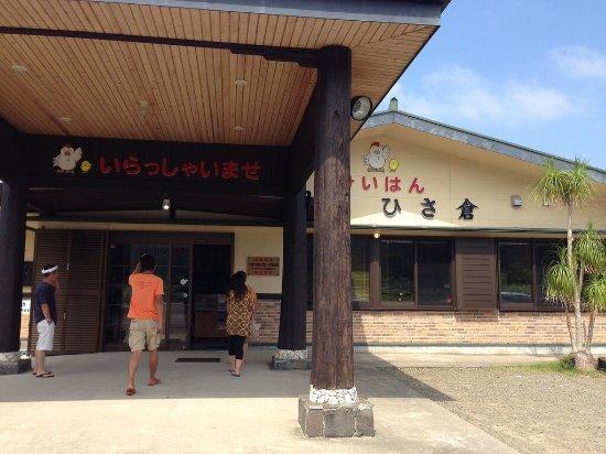 Oshima-gun Tatsugo-cho, Japonia: photo0.jpg