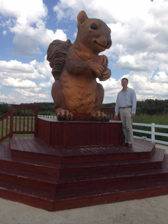 Cedar Creek, TX: ROUS - rodent of unusual size