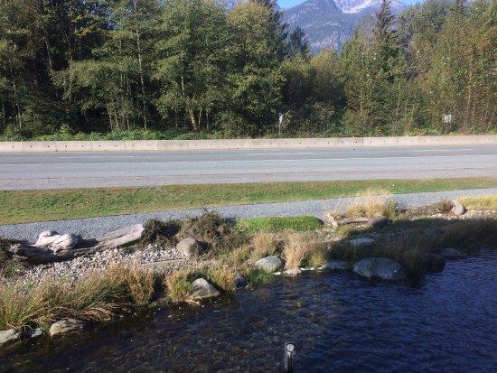 Squamish Adventure Centre: photo4.jpg