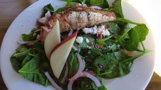 Grand Lake Lodge: Salmon Salad.  Good for $14.