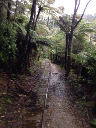 Waihi 사진