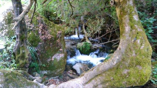 El Bosque, Spania: IMG_20160929_181200_large.jpg