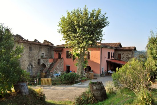 Agriturismo Il Montale