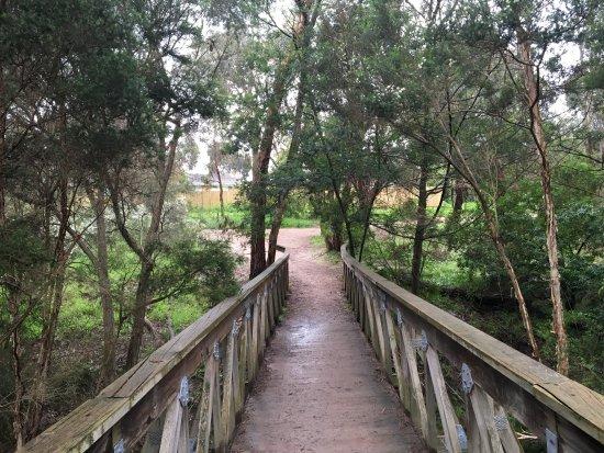 Wurundjeri Walk
