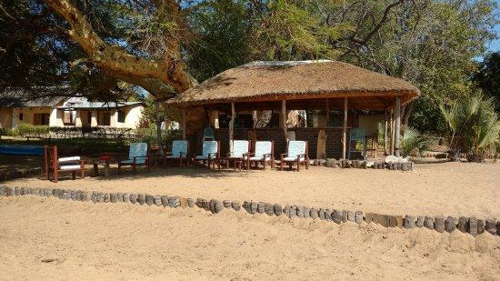 The Cichlids Lodge