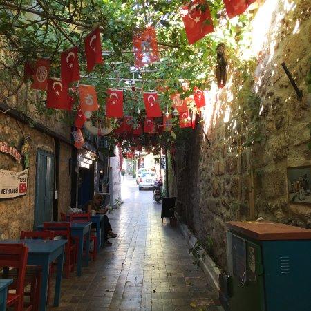 My Turkey Adventure - Tours: photo1.jpg