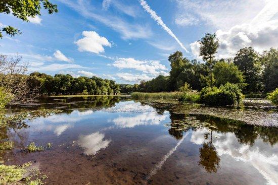 Hereford, UK: the lake