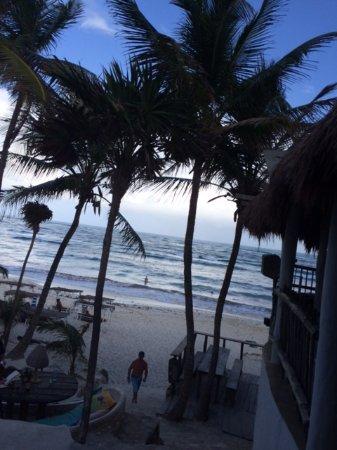 Livetulum Papaya Playa Beach Club Early Evening