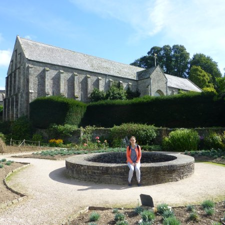 Yelverton, UK: in the sun