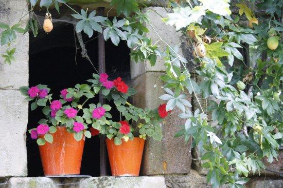 Fons, France : Jardin