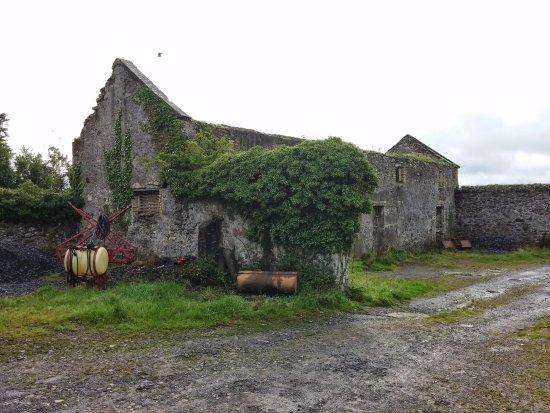 "Crossmolina, Ireland: ""The ugly ruins"""
