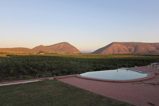 DuVon Guesthouse : View of the vineyards from outside the unit