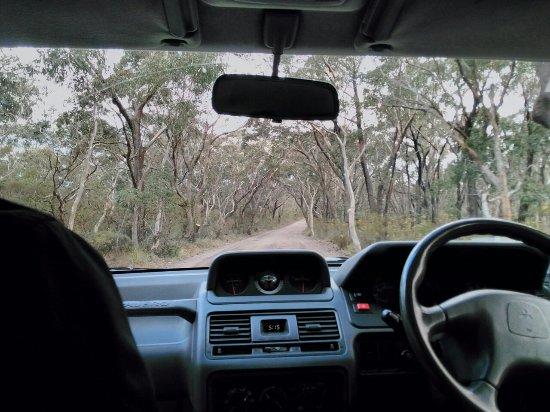 Blackheath, Australien: IMG_20160925_152356_large.jpg