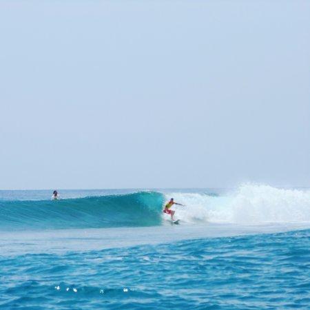Laamu Atoll : Surfing