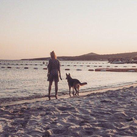 Ilica Beach: photo0.jpg