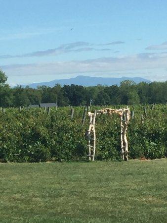 Νότιο Hero, Βερμόντ: Snow Farm Vineyard