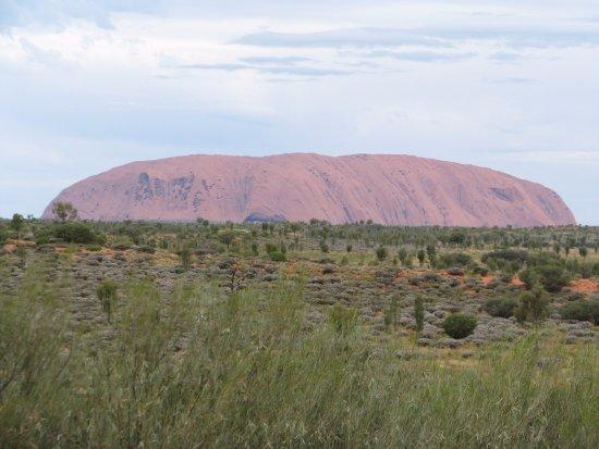 Best Uluru Tours Tripadvisor