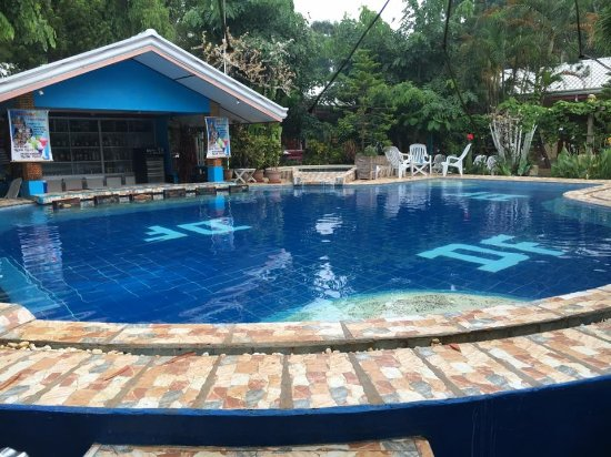 Deep Forest Garden Hotel: Pool Area with Bar