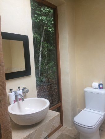Trogon House and Forest Spa: Room nr 7 and our starter for Dinner. They made extra effort to make it look cozy.