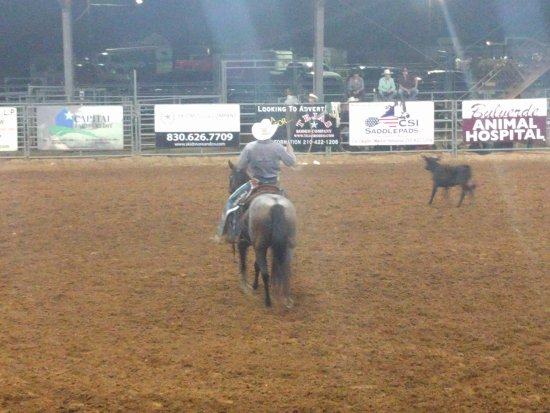 Tejas Rodeo Picture Of Tejas Rodeo Company Bulverde