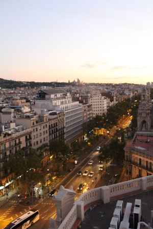 Hotel Avenida Palace: views from terrace