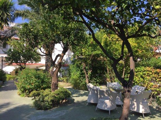 Casa Vacanze Parco del Generale: photo0.jpg