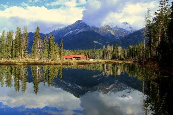 Golden, Canada: Buffalo Ranch & Guest House Air BnB