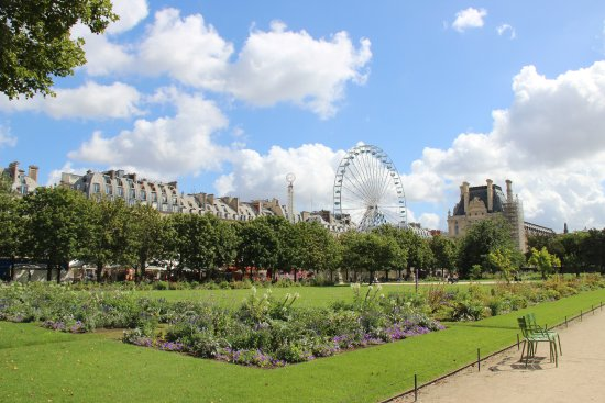 Jardin des tuileries bild fr n jardin des tuileries for Jardin des tuileries 2016