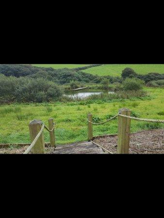 Reddivallen Farm Photo